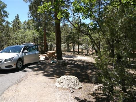 Pine Loop, 290 - Picture of Mather Campground, Grand