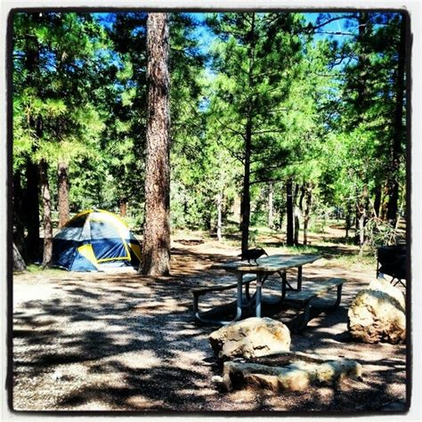 Mather Campground - 10 tips