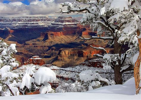 Grand Canyon Winter Snow Pictures