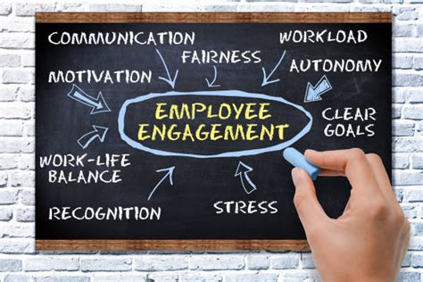 Best Employee Engagement Stock Photos, Pictures & Royalty
